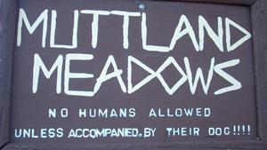 muttland-board